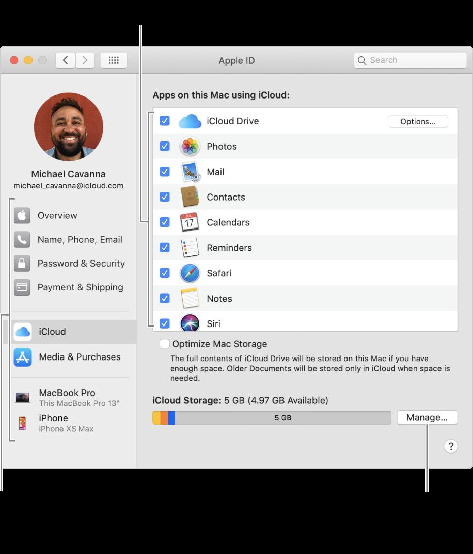 Preferenze iCloud con tutte le funzionalità selezionate.