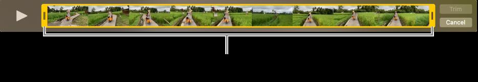 视频剪辑中的黄色修剪控制柄。