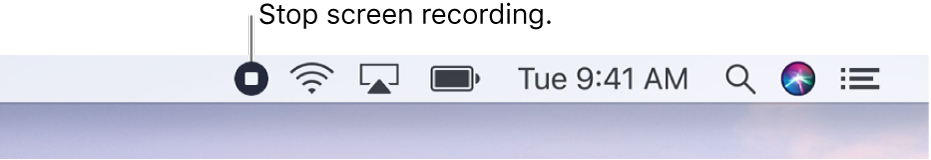The menu bar showing the Stop Recording button.