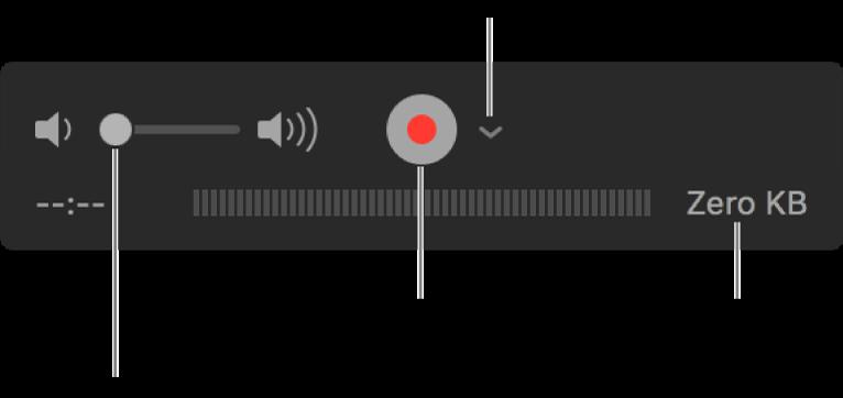 Opptakskontrollene, inkludert volumkontrollen, Ta opp-knappen og Valg-lokalmenyen.