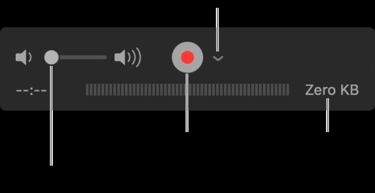 Елементи керування записом, в тому числі елементи керування гучністю, кнопка «Записати» і спливне меню «Параметри».