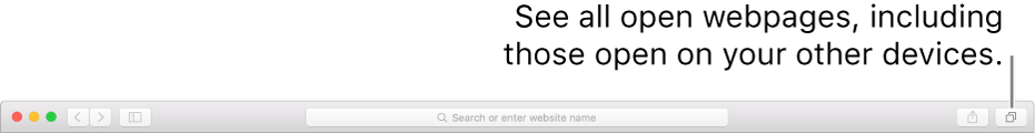 The toolbar, showing the Show All Tabs button.