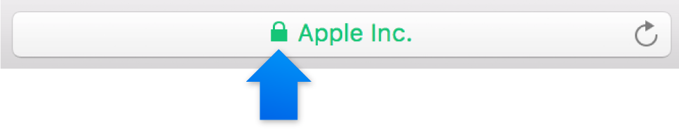 The encryption icon (looks like a lock) for a site with an Extended Validation certificate.