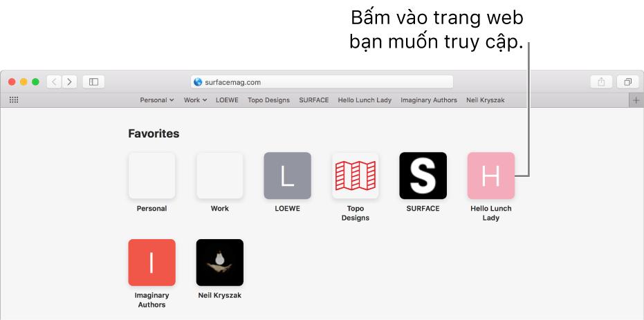 Trường tìm kiếm và địa chỉ của Safari; bên dưới là các biểu tượng của trang web ưa thích.