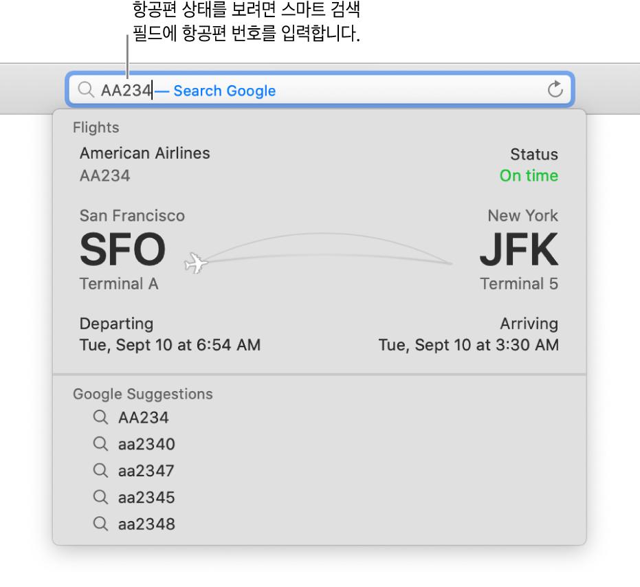항공편 번호가 입력되어 있고 해당 항공편 상태가 바로 아래에 표시되어 있는 스마트 검색 필드.