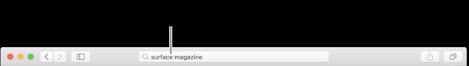 Het slimme zoekveld van Safari, waarin je de naam of URL van een pagina kunt typen.