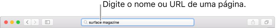 O campo de pesquisa inteligente do Safari, onde pode introduzir o nome ou URL de uma página.