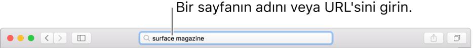 Sayfanın adını veya URL'sini girebileceğiniz Safari Akıllı Arama alanı.