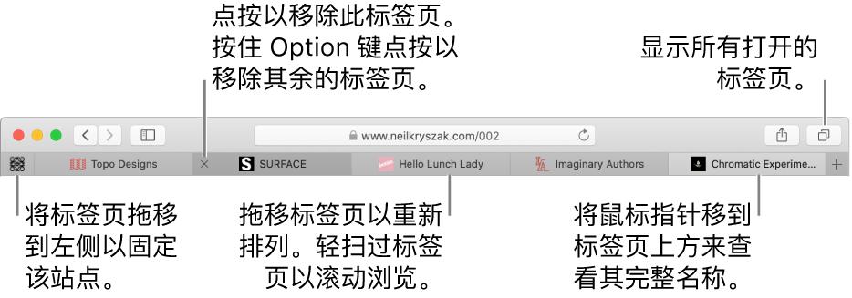 带标签页的 Safari 浏览器窗口。