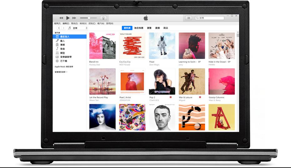 iTunes 視窗顯示多張專輯的資料庫。