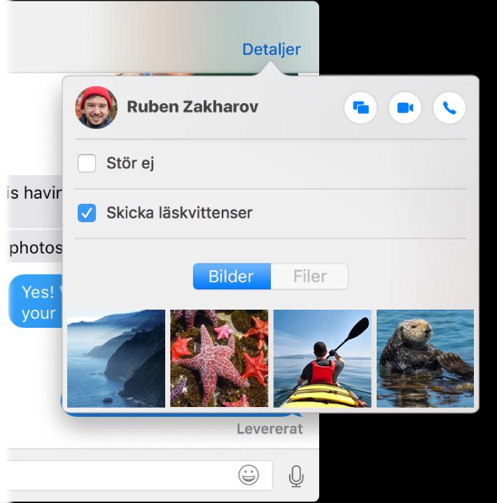 En skärmavbild av en del av Meddelanden-fönstret och menyn Detaljer.