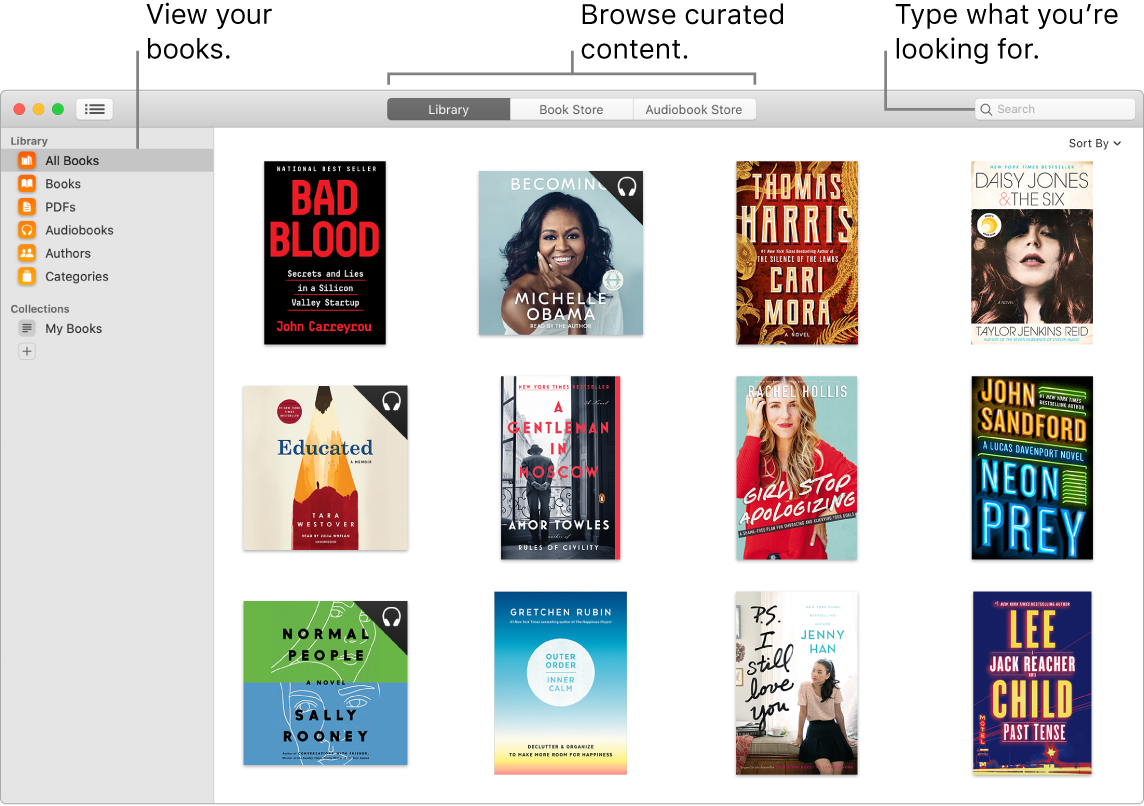 A Books app window showing how to view books, browse curated content, and search.