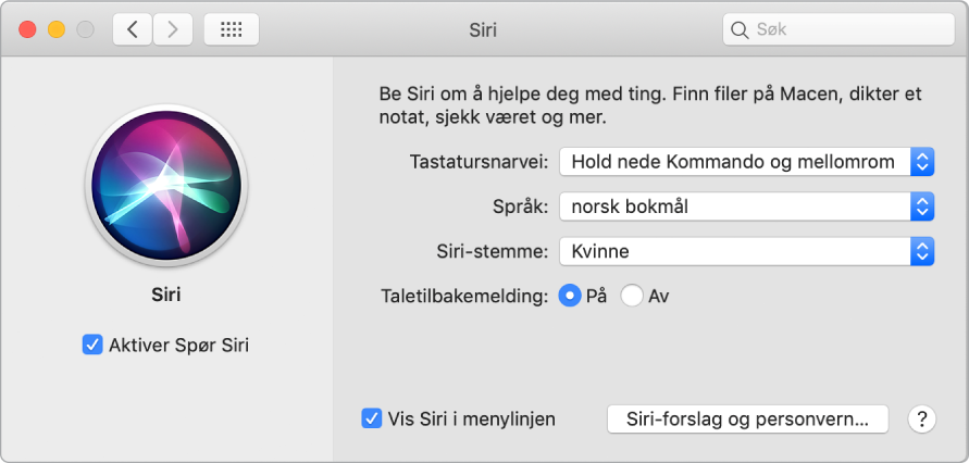 Siri-valg-vinduet med Aktiver Spør Siri markert til venstre og flere valg for tilpassing av Siri til høyre.