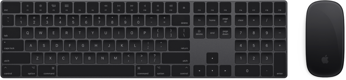 The Magic Keyboard with Numeric Keypad and Magic Mouse 2, which come with your iMac Pro.