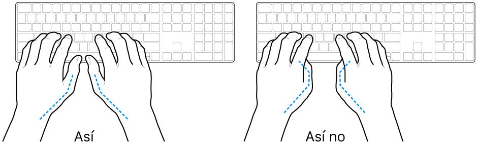 Manos posicionadas sobre un teclado, mostrando la alineación correcta e incorrecta de los pulgares.