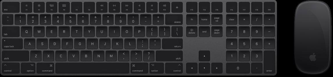 Le MagicKeyboard avec clavier numérique et la MagicMouse2 fournis avec votre iMacPro.