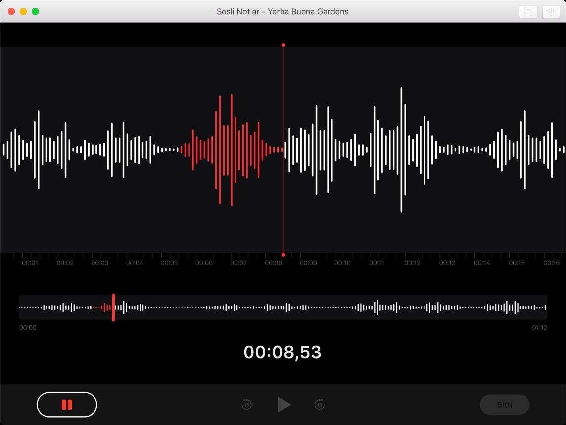 Devam eden bir kaydı gösteren bir Sesli Notlar penceresi.