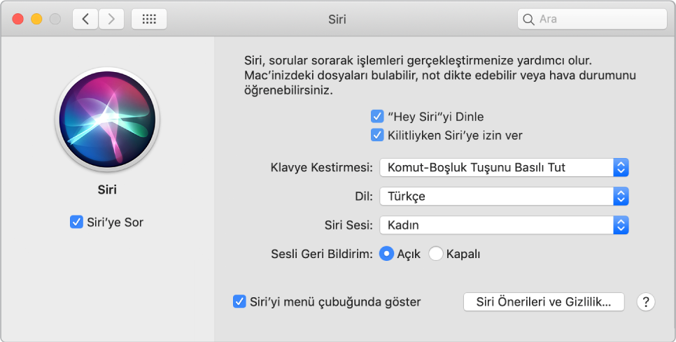 """Sol tarafta Siri'ye Sor seçili hâlde olan ve sağ tarafta """"'Hey Siri'yi Dinle"""" de dahil olmak üzere Siri'yi özelleştirmeyle ilgili çeşitli seçenekler bulunan Siri tercihleri penceresi."""