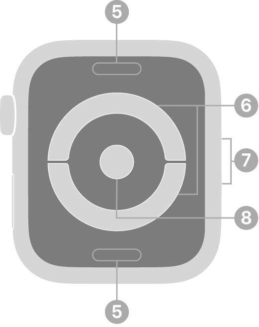Die Rückseite der AppleWatchSeries4 mit Beschriftungen für Entriegelungstaste, elektrischem Herzsensor, Lautsprecher/Luftöffnung und optischem Herzsensor.
