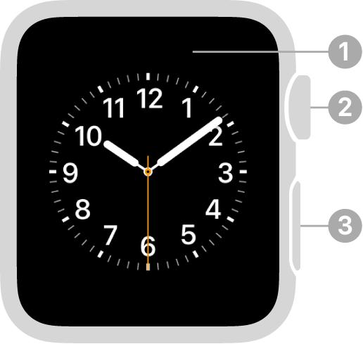 Die Vorderseite der AppleWatchSeries3 mit Beschriftungen für Display, Digital Crown und Seitentaste.
