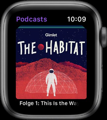 Ein Podcasts-Bildschirm mit einer großen Datei mit dem Namen des Podcasts. Darunter wird der Name einer Folge angezeigt.