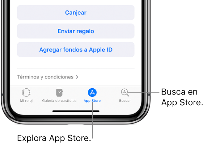 """Parte inferior de la app AppleWatch en el iPhone, mostrando cuatro pestañas: la izquierda es """"Mi reloj"""", donde está la configuración del AppleWatch; luego está la """"Galería de carátulas"""", donde puedes explorar las carátulas y complicaciones disponibles; luego AppStore, donde puedes descargar apps para el AppleWatch; y la última pestaña es Buscar, donde puedes encontrar una app en AppStore."""