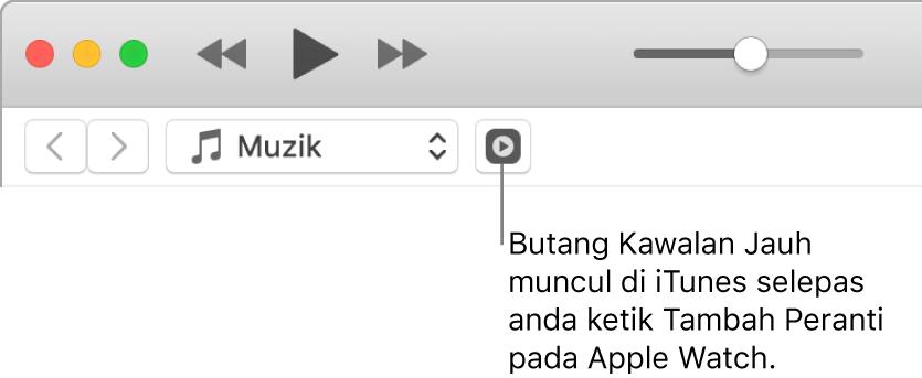 Butang Remote dalam iTunes muncul semasa anda cuba menambah pustaka ke Apple Watch.