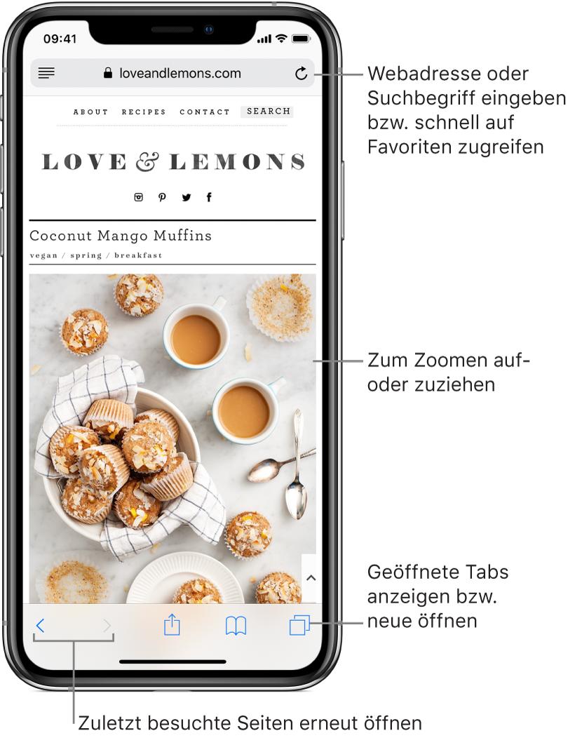 """Eine im Fenster """"Safari"""" geöffnete Website mit dem Adressfeld oben. Unten sind von links nach rechts die Tasten """"Zurück"""", """"Vorwärts"""", """"Teilen"""", """"Lesezeichen"""" und """"Seiten"""" zu sehen."""