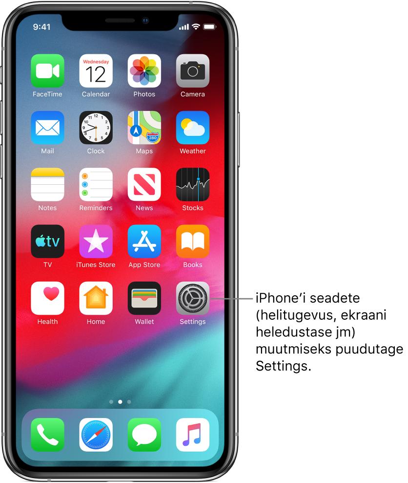 Home-kuva erinevate ikoonidega, k.a ikoon Settings, mida puudutades saate muuta iPhone'i helitugevust, ekraani heledustaset jm.