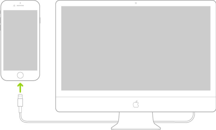 """""""iPhone"""" prijungtas prie """"Mac"""" naudojant jungtį """"Lightning"""", pereinančią į USB laidą."""