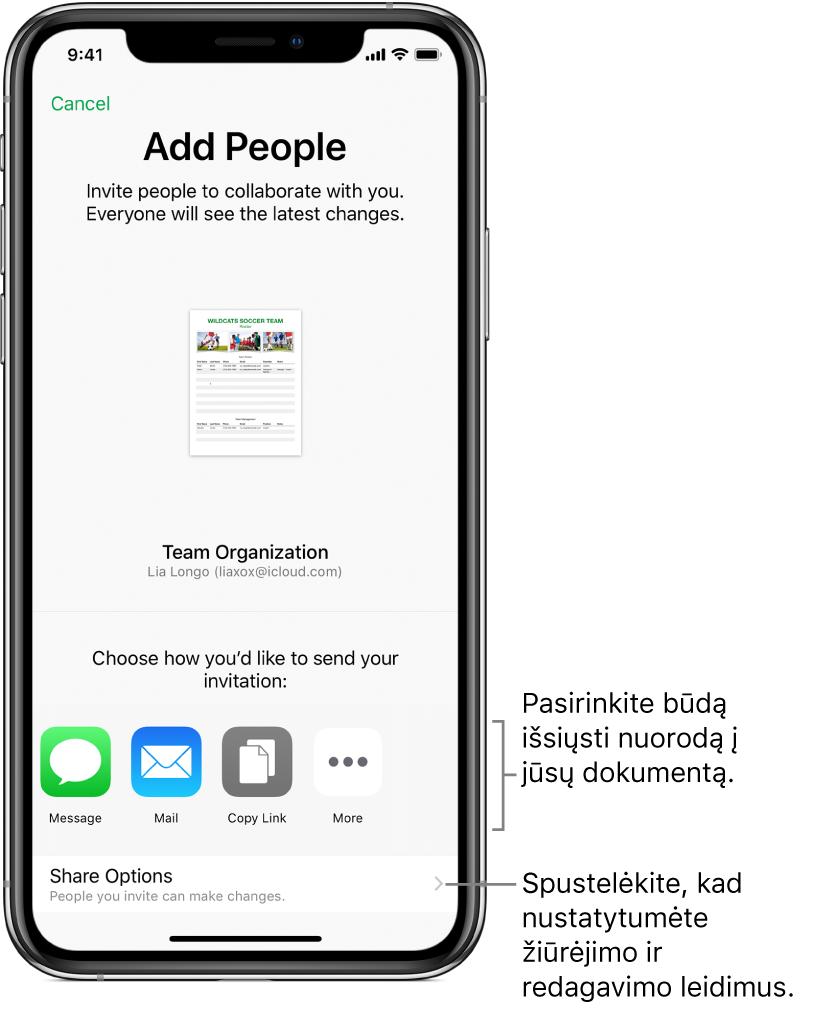 """Žmonių kvietimo peržiūrėti ir redaguoti failą ekranas. Į pakvietimo siuntimo būdus įeina """"Message"""" ir """"Mail"""". Žemiau pasirodo bendrinimo parinktys."""