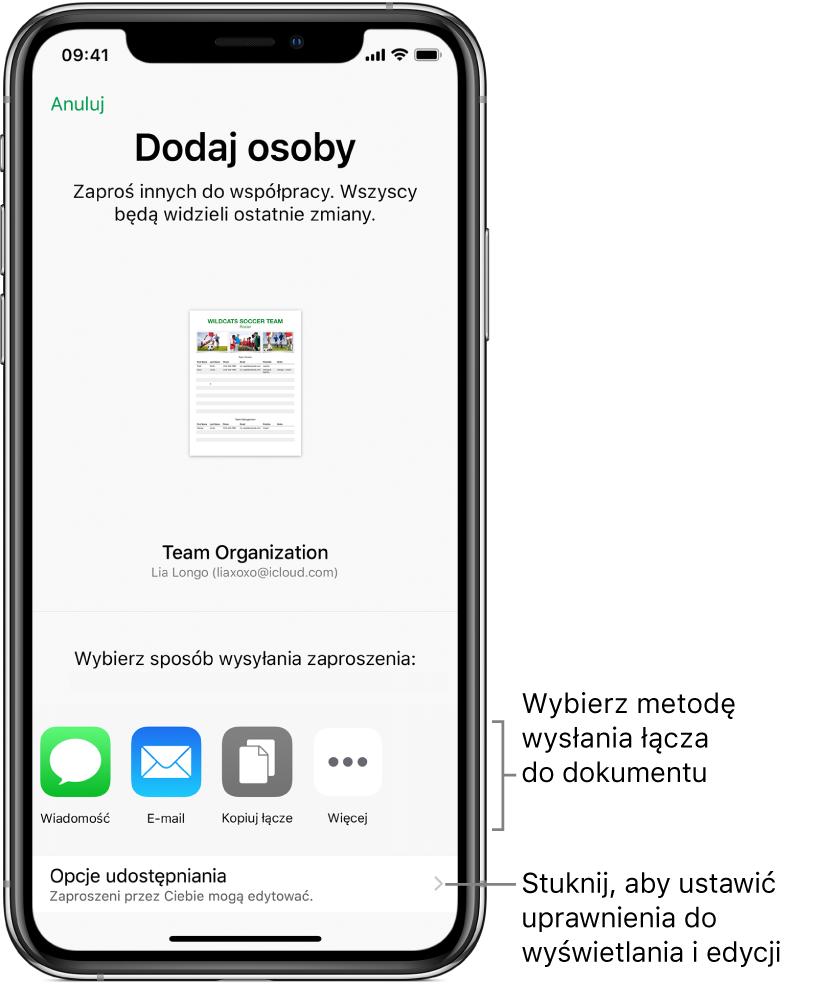 Ekran zapraszania osób do wyświetlania iedycji pliku. Zaproszenie można wysłać, używając na przykład wiadomości lub aplikacji Mail. Niżej znajdują się opcje udostępniania.
