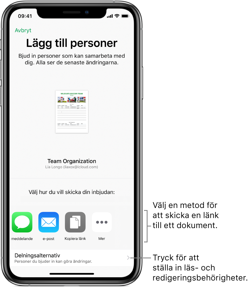 En skärm för att bjuda in personer att läsa och redigera en fil. Det finns olika metoder för att skicka inbjudan, till exempel via Meddelanden och Mail. Delningsalternativen visas under dessa.