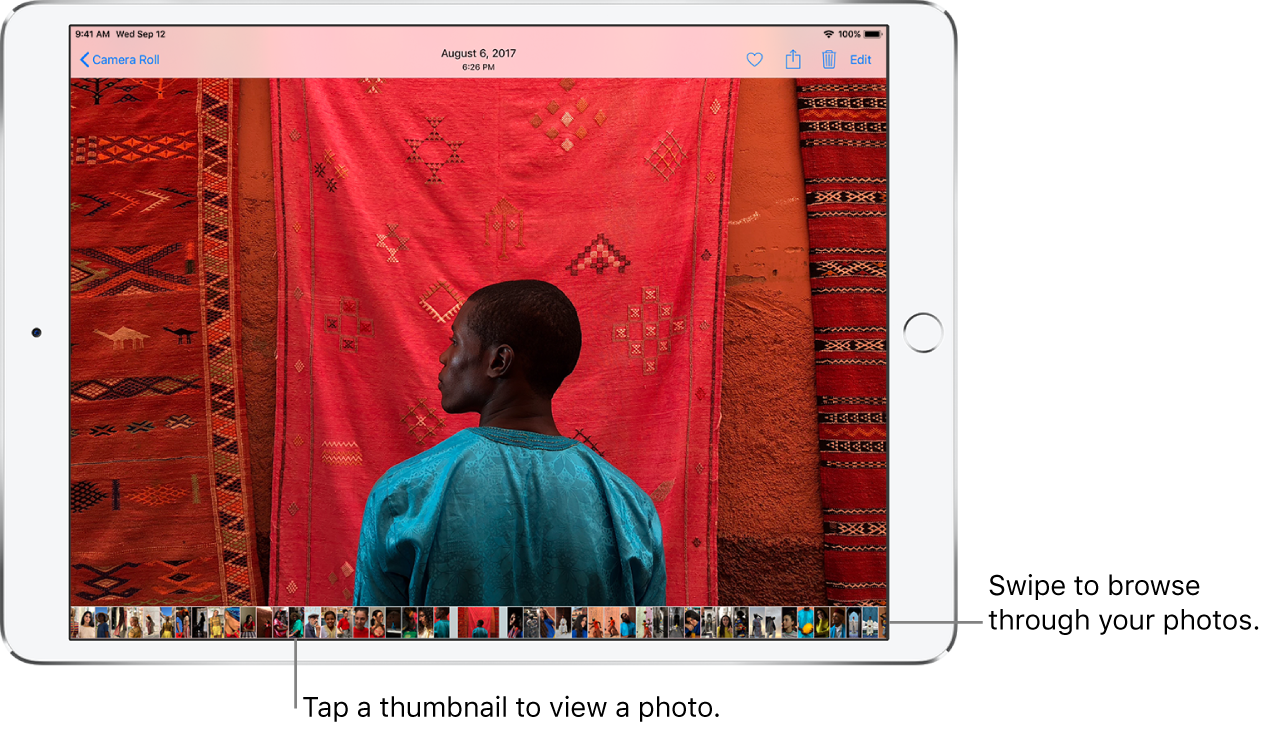 A photo with thumbnails of other photos in the Camera Roll across the bottom of the screen. At the top left is the Camera Roll button, which takes you back to the Camera Roll screen. Along the top right are the Like, Share, Delete, and Edit buttons.