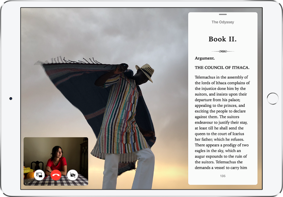 The Photos apps fills the screen. The Books app is open in Slide Over on the right. A FaceTime window is open at the bottom left.