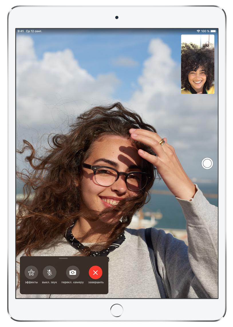 Программа FaceTime, в которой отображается активный вызов.