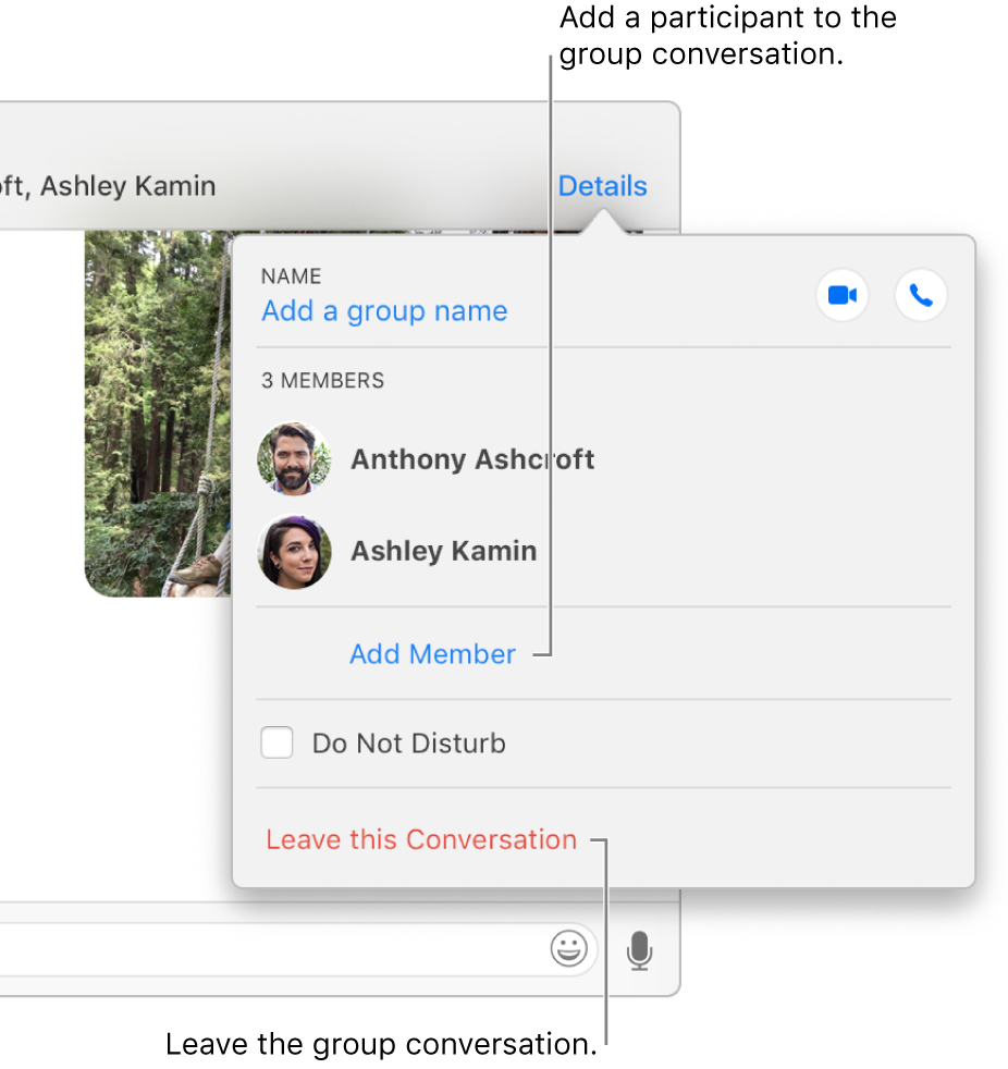 Send a text to a group using Messages on Mac - Apple Support