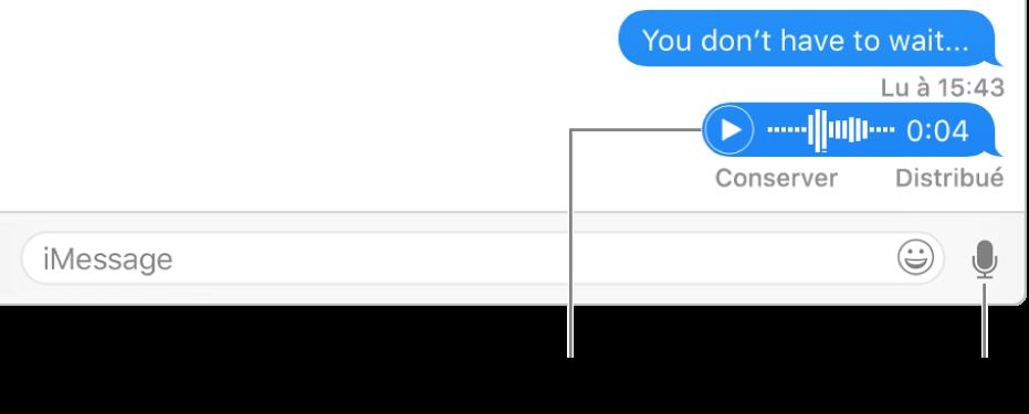 Une conversation dans la fenêtreMessages avec le boutonSoundbite en regard de la zone de texte au bas de la fenêtre.