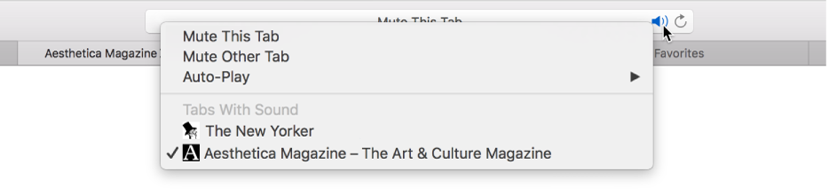 Mute audio in tabs in Safari on Mac - Apple Support