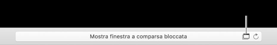 Il campo di ricerca smart che mostra un'icona a destra per consentire le finestre a comparsa.