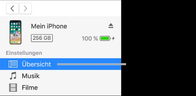 """Das Fenster """"Gerät"""" mit links in der Seitenleiste ausgewählter Option """"Übersicht"""""""