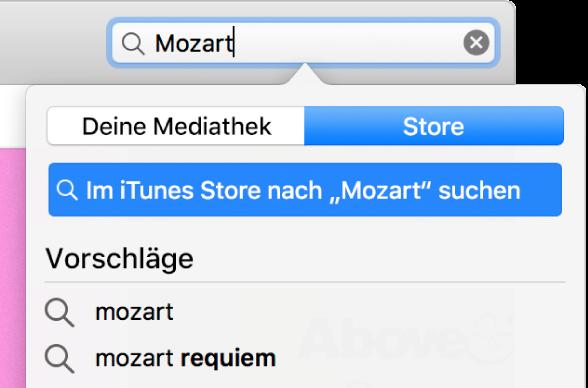 """Das Suchfeld mit eingegebenem Suchbegriff """"Mozart"""" Einblendmenü """"Ort"""" mit ausgewählter Option """"Store"""""""
