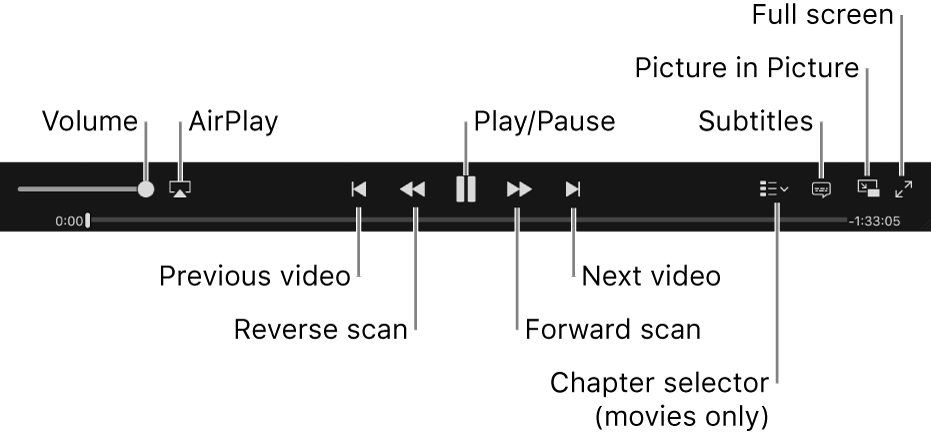 Video controls: Volume, AirPlay, Previous video, Reverse scan, Play/Pause, Forward scan, Next video, Chapter selector (for movies only), Subtitles, Picture in Picture, and Full screen.