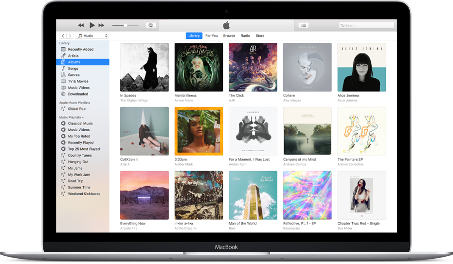 The iTunes window with a library of multiple albums.