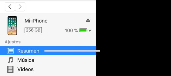 La ventana del dispositivo con la opción Resumen seleccionada en la barra lateral de la izquierda.