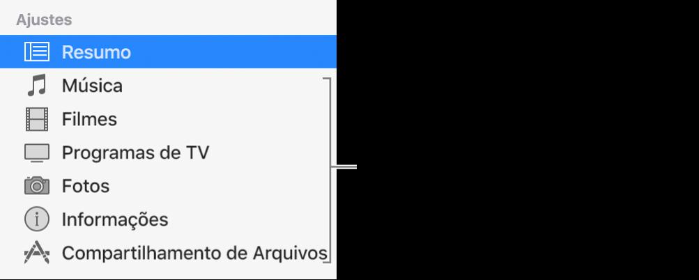 Resumo está selecionado na barra lateral à esquerda. Os tipos de conteúdo que aparecem podem variar conforme o dispositivo e os conteúdos da sua biblioteca do iTunes.