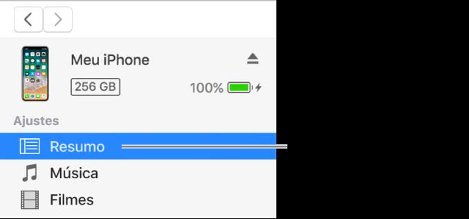 Janela Dispositivo, com Resumo selecionado na barra lateral à esquerda.