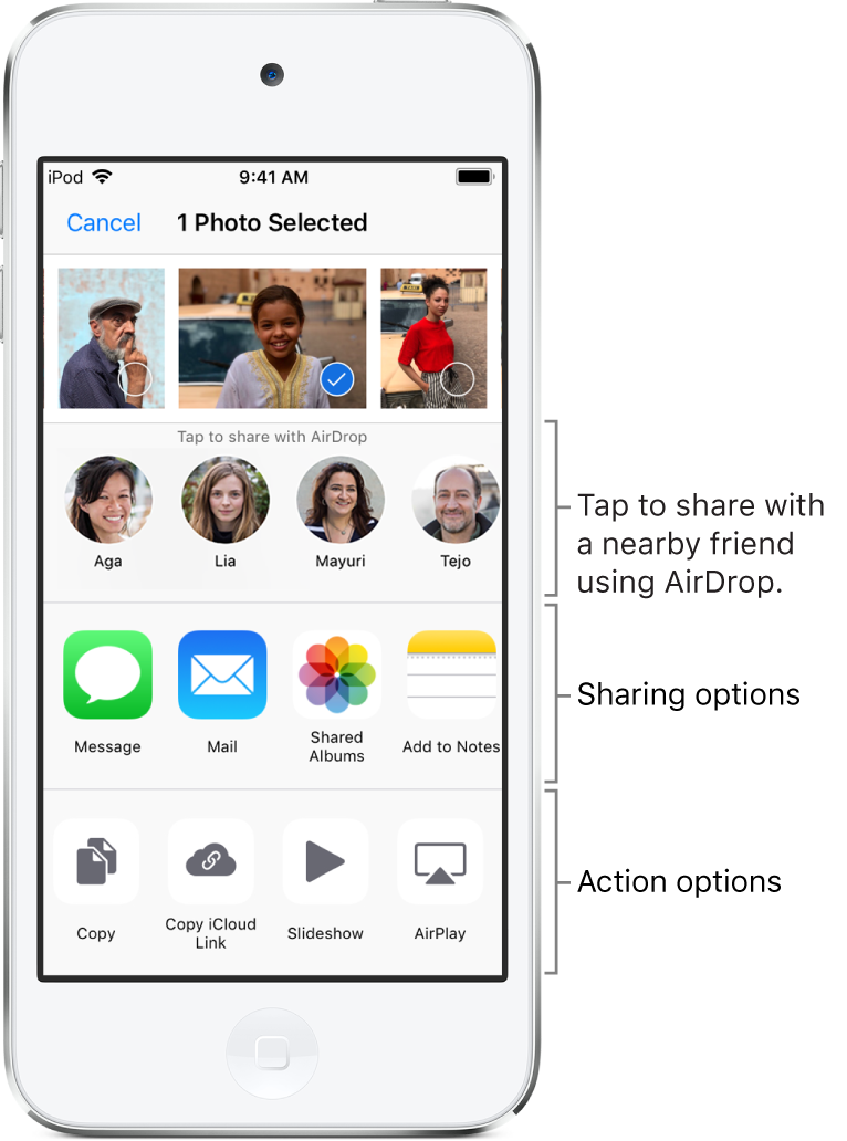 The AirDrop Share screen. At the top are photos to select and share. Below that are people you can share with using AirDrop. The next row shows sharing options, including Message, Mail, Shared Albums, and more. The bottom row shows other actions, including Copy Link, Slideshow, and Add to Album.