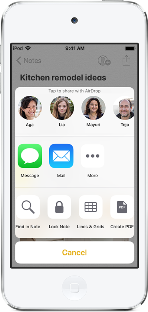 The share screen with options to share a note with AirDrop or through Messages or Mail.
