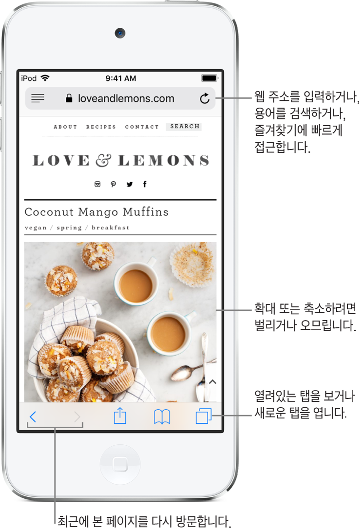 상단에 주소 필드가 있고 웹 사이트가 열려있는 Safari 윈도우. 하단 왼쪽에서 오른쪽으로 뒤로, 앞으로, 공유, 책갈피 및 페이지 버튼.